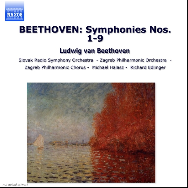 an essay on ninth symphony by ludwig van beethoven
