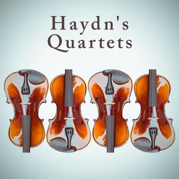 slow movement from haydns emperor quartet essay