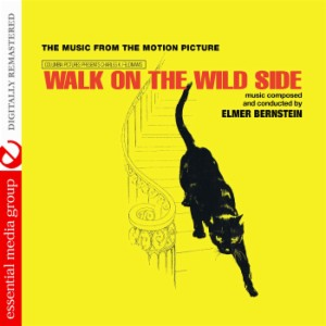 a literary analysis of walk on the wild side Check out our thorough thematic analysis into the wild themes from litcharts the original text plus a side-by-side modern translation of every shakespeare.
