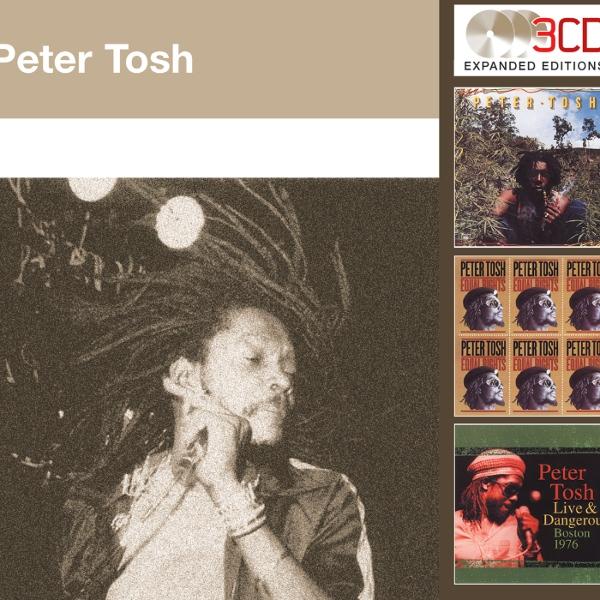 peter tosh mystic man album download